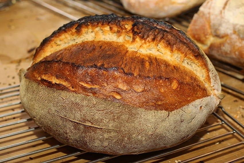 Hier siehr man ein Italienisches Landbrot aus dem Brotbackkurs mit Lutz Geißler und Schelli.